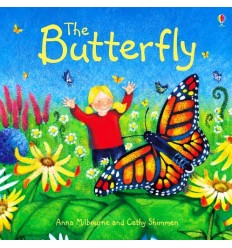 The Butterfly (Usborne Picture Book)