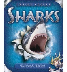 Sharks (Flap Book)