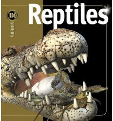 Reptiles (Insiders Series)
