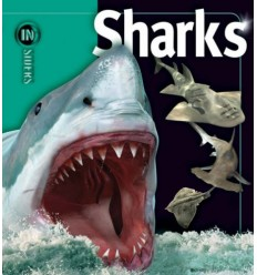 Sharks (Insiders Series)